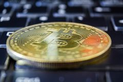 Golden bitcoin on keyboard. Trading concept of crypto currency.  stock photography