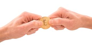 Golden Bitcoin in a man`s hands, tug-of-war concept for business. Rivalry. Digitall symbol of a new virtual currency isolated on white background Royalty Free Stock Photo