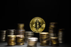 Golden bitcoin with money coins background. Bitcoin on black background Stock Photos
