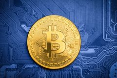 Golden bitcoin on printed circuit board. Golden bitcoin on top of a blue printed circuit board Royalty Free Stock Photos