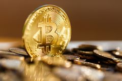 Golden Bitcoin shimmers in the sun, other coins have fallen. Close-up stock photo