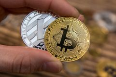 Golden Bitcoin and silver litecoin holding in mans fingers closeup. Golden bitcoin silver litecoin holding in mans fingers closeup on wooden background stock photo