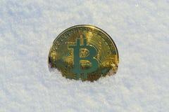Golden bitcoin in snow. royalty free stock photos