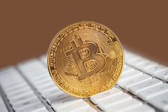 Golden Bitcoin standing upright on white keyboard with copy space. Stock Images