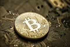 Bitcoin coin on a circuit board stock photo