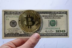 Golden bitcoin and us dollars in hand. The concept of currency exchange royalty free stock image