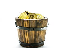 Golden Bitcoins in barrel. Digital symbol of a new virtual currency on isolate background. Golden Bitcoins in barrel. Digital symbol of a new virtual currency Royalty Free Stock Image