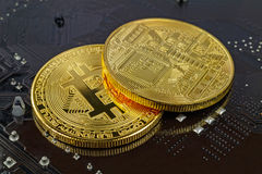 Golden bitcoins on the black background closeup. Cryptocurrency virtual money Royalty Free Stock Photo
