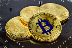 Golden bitcoins on the black background closeup. Cryptocurrency virtual money Stock Photography