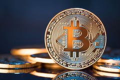 Golden Bitcoins on a blue background Royalty Free Stock Photos