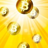 Golden bitcoins in the bright yellow  rays of sun effect backgro Stock Image