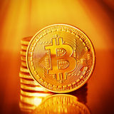 Golden Bitcoins . Royalty Free Stock Images