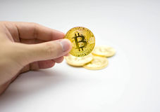 Golden bitcoins in hand. Digital symbol of a new virtual currency on white background. Golden bitcoins in hand. Digital symbol of a new virtual currency Stock Image