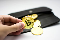 Golden bitcoins in hand. Digital symbol of a new virtual currency on white background and black wallet. Golden bitcoins in hand. Digital symbol of a new virtual royalty free stock photo