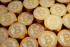 Golden Bitcoins - one golden Dollar coin Stock Image