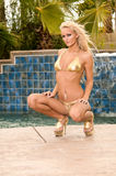 Golden Blonde In Bikini Stock Image