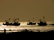 Golden Boats. Boats of Indian fisherman returning home on a golden evening Royalty Free Stock Image