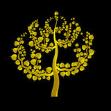 Golden Boh tree Royalty Free Stock Images
