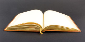 Golden book. Isolated on dark background Royalty Free Stock Photography