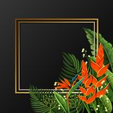 Golden border with bird of paradise flowers. Illustration Royalty Free Stock Photography