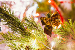 Golden bow on a background of green Christmas tree branches Royalty Free Stock Photography