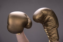 Golden boxing gloves Royalty Free Stock Photography