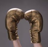 Golden boxing gloves Royalty Free Stock Photos