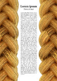 Golden braid background Stock Photo