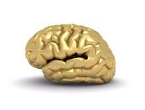 Golden brain. 3d rendered illustration of a golden brain Stock Images