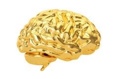 Golden Brain, 3D rendering. On white background Stock Photo