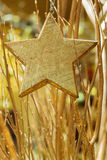Golden branches star Royalty Free Stock Images