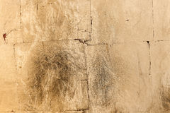 Golden bronze colored grunge texture or background Royalty Free Stock Images