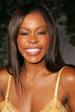 Golden Brooks Royalty Free Stock Photo