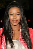 Golden Brooks Royalty Free Stock Image
