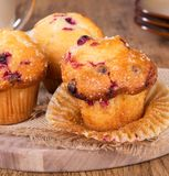 Golden Brown Cranberry Muffins Stock Photography