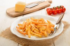 Golden brown french fries with melted cheese on a plate Royalty Free Stock Images