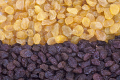 Golden and Brown Raisin Background Stock Photos