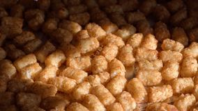 Closeup of tater tots coming out of the oven. Golden brown tater tots hot out of the oven on cookie sheet in sunlight Royalty Free Stock Photos