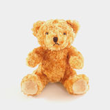 Golden brown teddy bear Stock Photos