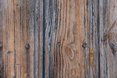 Golden Brown wood texture. Abstract background Stock Photo