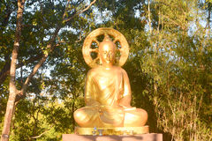 Golden budda statue Royalty Free Stock Image
