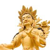 Golden Buddah. Statue of Green Tara a Tibetan buddhist God against white background stock photography
