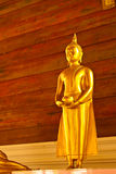 Golden buddha. Public Domain, Generality in Thailand , any kind of art decorated t in Buddhist Church , temple pavilion , temple hall , monk's house , Pagoda Stock Image