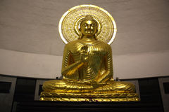 Golden Buddha Stock Photo