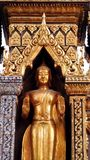 Golden buddha Royalty Free Stock Photo