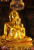 The golden buddha Royalty Free Stock Photography