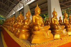Golden Buddha. Royalty Free Stock Images