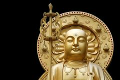 Golden Buddha. Statue isolated on black background Royalty Free Stock Image