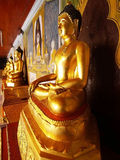 Golden buddha around gate of Thai temple. Many golden buddhas around gate of Thai temple Royalty Free Stock Photo