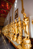 Golden Buddha arranged in several rows along Stock Image